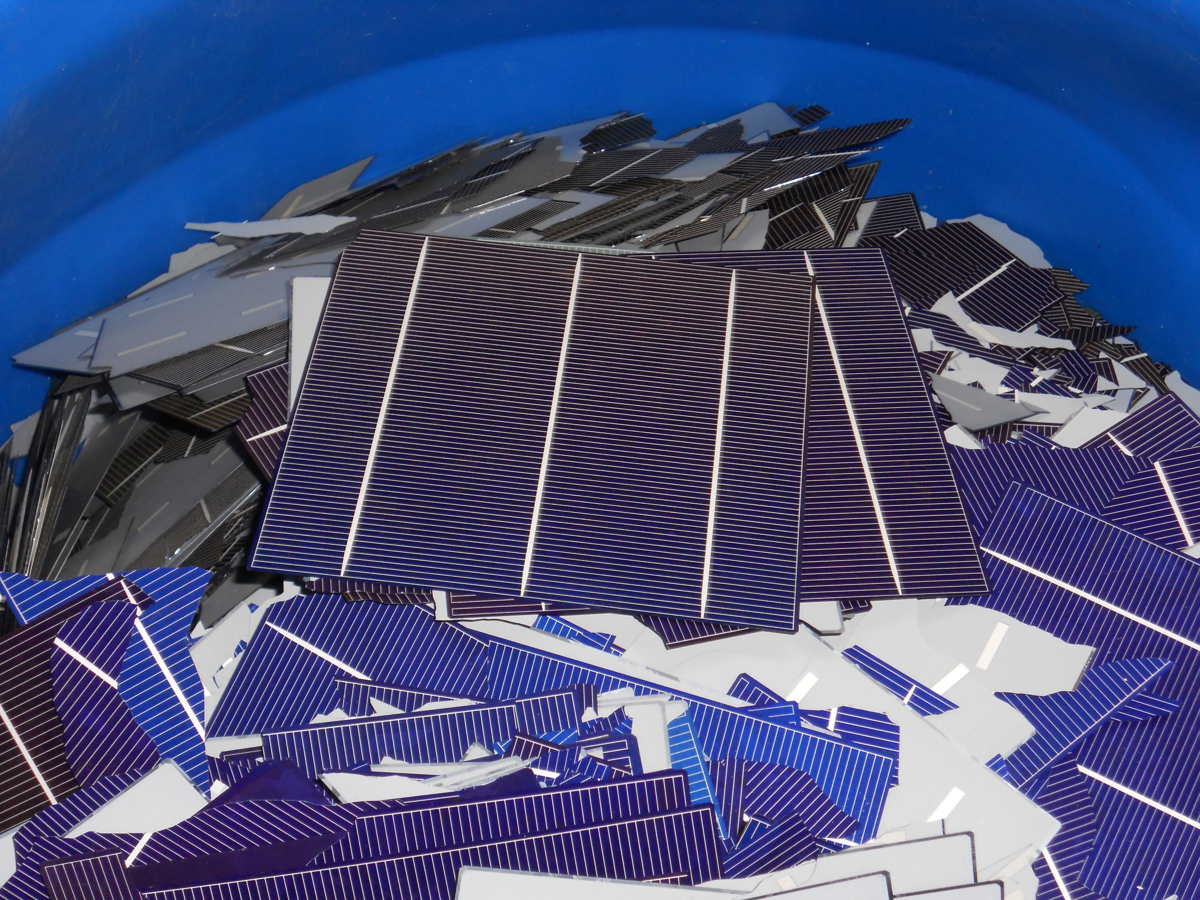 Bulk Scrap Solar Cells 100lbs 12,000 Watts