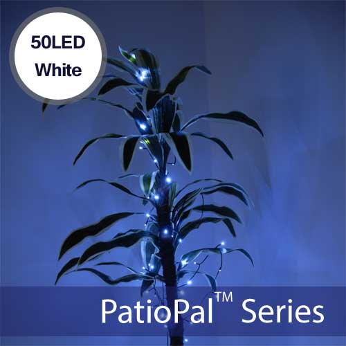 50 LED White Solar Holiday Lights