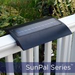 2020.5.7-Sunpal-on-railing