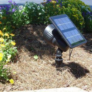 Progressive Solar Spot Light