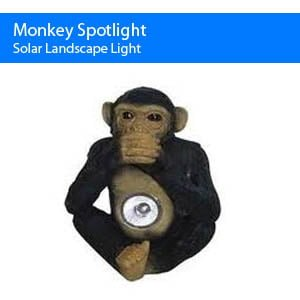Solar Monkey Spot Light
