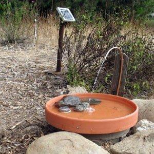 Solar Bird Bath Fountains & Solar Kits